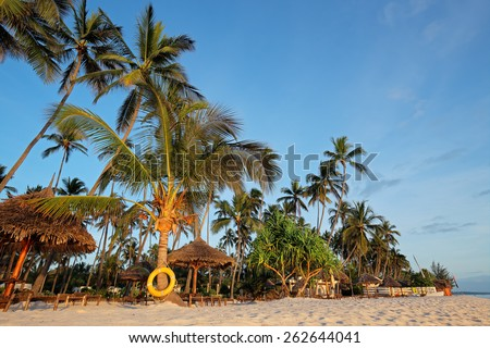 White sand and palm trees on a tropical beach of Zanzibar island - stock photo