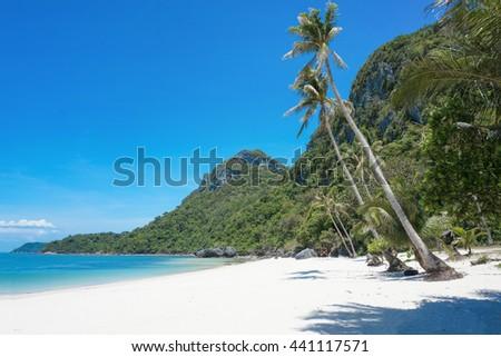 White sand beach and mountain                                - stock photo