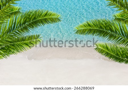 White sand beach and tropical sea with palm tree. Resort background. - stock photo