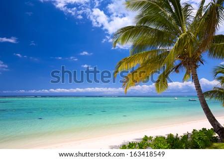 White sand beach in Mauritius Island - stock photo