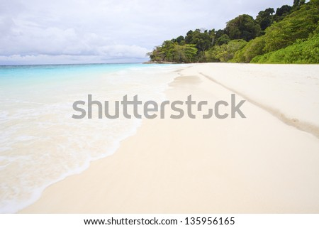 white sand beach of tachai island southern thailand similan national park