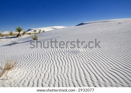 White Sands National Monument - New Mexico - stock photo
