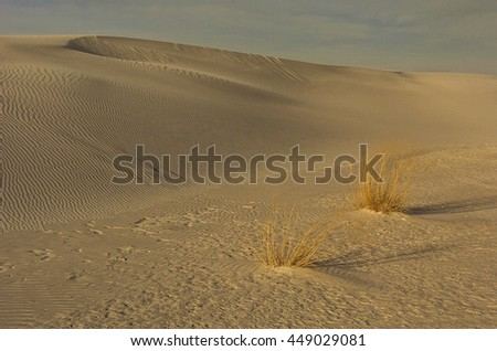 White Sands, New Mexico - stock photo