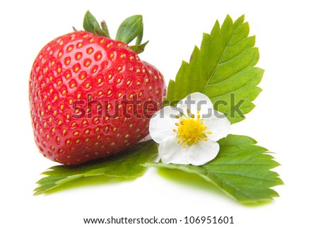 white saucer with fresh red strawberry on a black background - stock photo