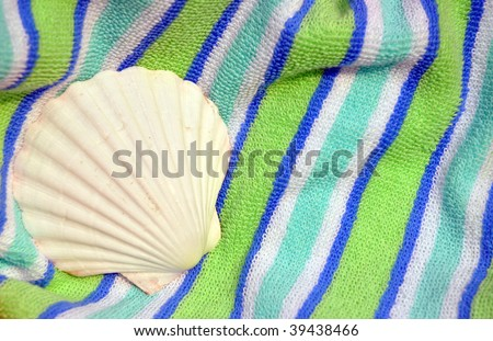 White scallop shell on pretty striped beach towel, room for copy space - stock photo