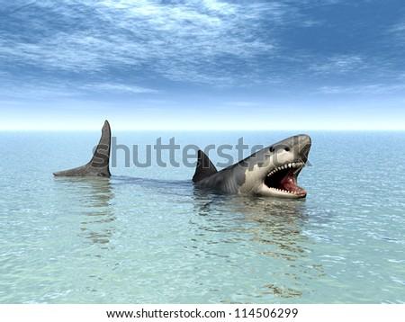 White Shark Computer generated 3D illustration - stock photo