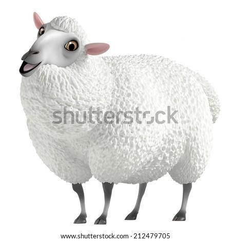 white sheep - stock photo