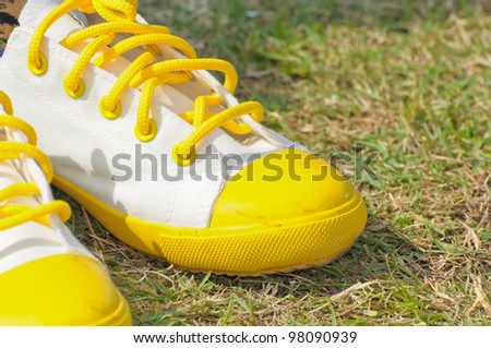 White shoes on the lawn - stock photo