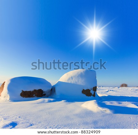 White Silence Frozen Nature - stock photo