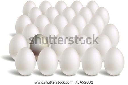 white silver eggs rows