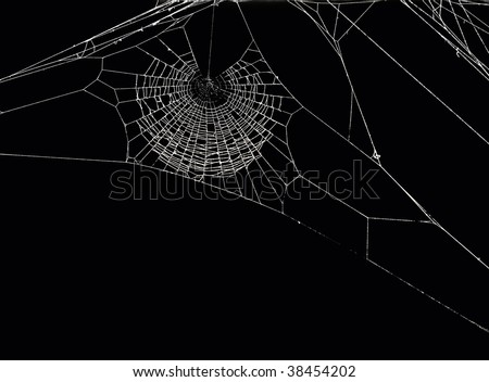 White spider's net isolated on a black background. - stock photo