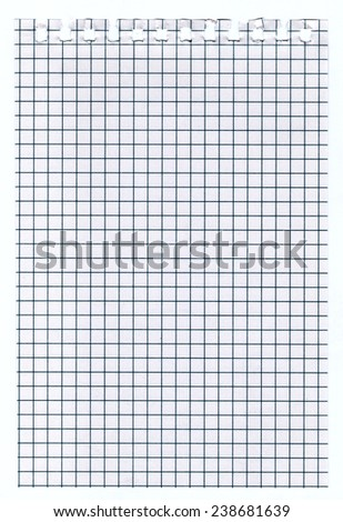 White squared empty math paper sheet texture, background - stock photo