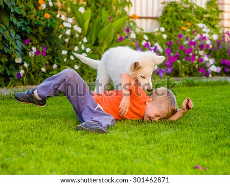 White Swiss Shepherd`s puppy and kid playing together on green grass - stock photo