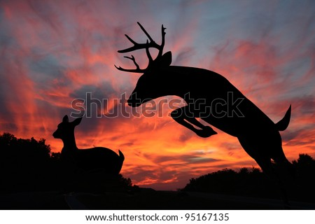 White tail buck jumping ravine with doe in the background make striking silhouettes against an amazing sunset in the background. - stock photo