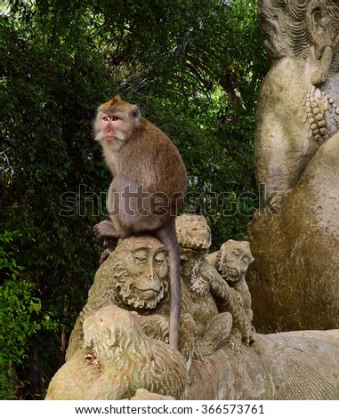 white-tailed monkey sitting on a stone monkey carving  in ubud monkey forest in  bali, indonesia
