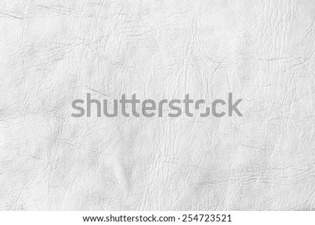 White  Textured Paper./ White  Textured Paper - stock photo