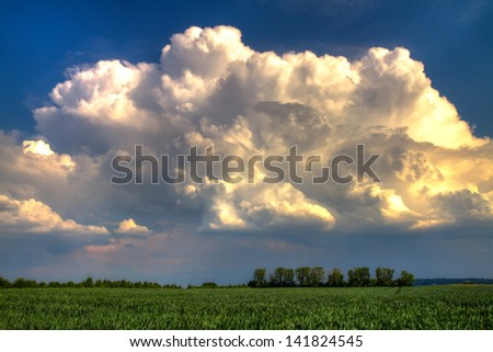 White Thundercloud over a green wheat field - stock photo