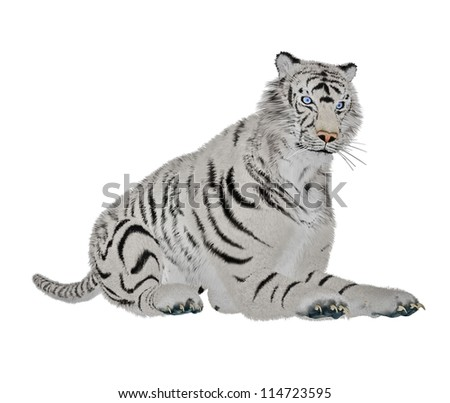 White tiger relaxing in white background