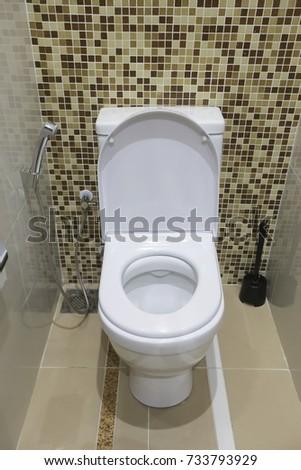 White Toilet Bowl And Handheld Bidet Spray In A Modern Bathroom.
