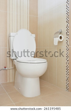 white toilet bowl in modern bathroom - stock photo