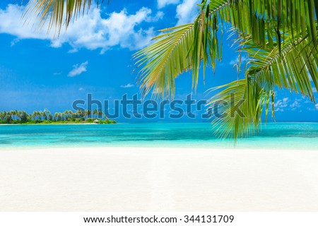 White tropical beach in Maldives with few palm trees and blue lagoon - stock photo