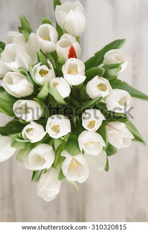 white tulips for Mother's Day - stock photo