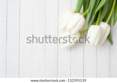 white tulips on white wooden background - stock photo