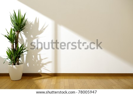 white wall and plant - stock photo
