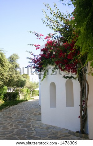 White wash stone house with arch windows, bougainvillea growing by the wall. - stock photo