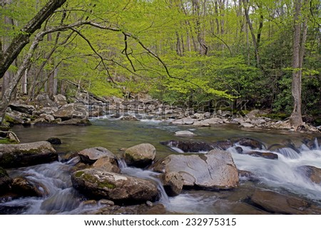 White water stream in The Great Smoky Mountains National Park. - stock photo