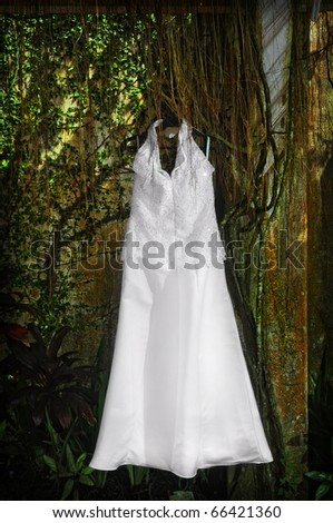 White wedding gown against wall of plants