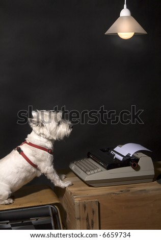 White West Highland Terrier sitting on a chair at a wooden crate with a typewriter on it and a hanging lamp overhead - stock photo