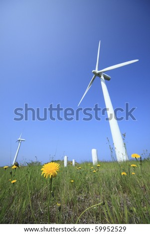 white windmill with dandelion.