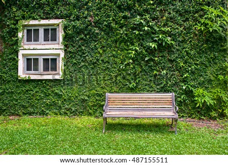 White window in house covered with green ivy and wood bench in green field.