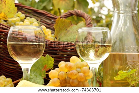 White Wine and Grapes - stock photo