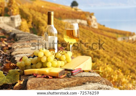 White wine and grapes on the terrace of vineyard in Lavaux region, Switzerland