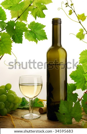 White wine and grapevine on white background - stock photo