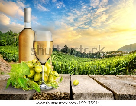 White wine and vineyard - stock photo