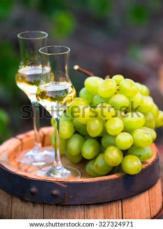 White wine bottle, glass, young vine and bunch of grapes against green  background of the vineyard