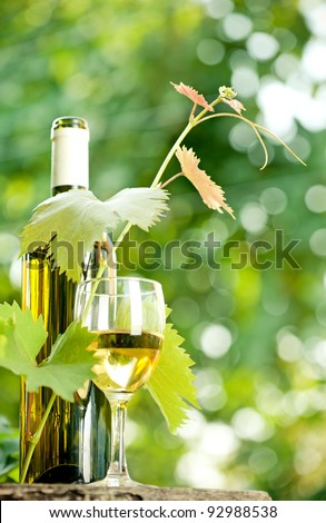 White wine bottle, young vine and glass against green spring background - stock photo