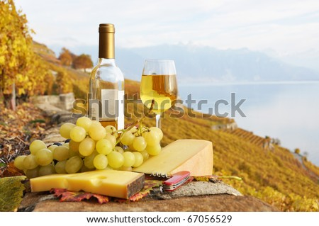 White wine, cheese and grapes on the terrace of vineyard in Lavaux region, Switzerland - stock photo