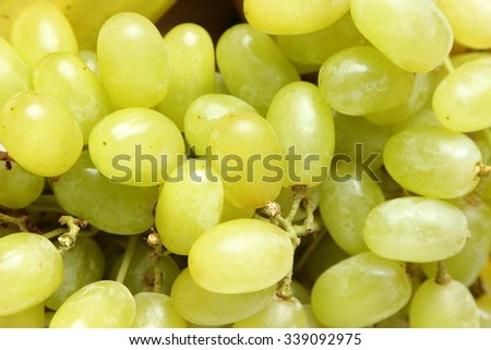 White wine grapes/Green grapes - stock photo