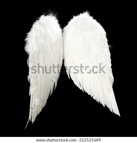 white wings of angel on black space  - stock photo