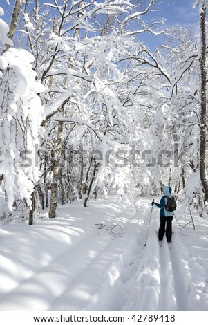 white winter landscape with skier on forest road end blue sky