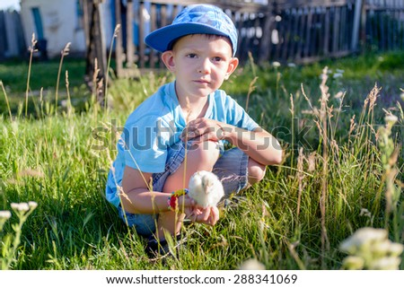 White Young Boy Playing at the Green Grasses With his Little Chick on his Hand, Looking at the Camera. - stock photo