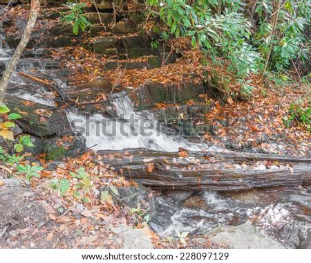 Whitewater stream, autumn, Western North Carolina Mountains. - stock photo