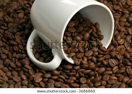 whole coffee grains and cup