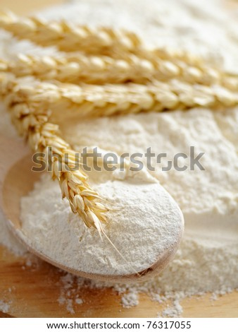 whole flour and wheat ears on the wooden table - stock photo