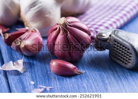 Whole garlic and vintage garlic press - stock photo