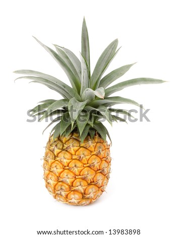 whole pineapple fruit with white isolated background